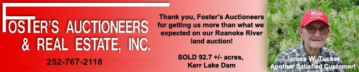 Fosters Auctioneers